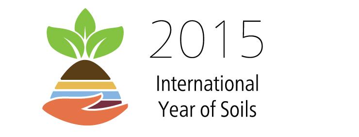 2015_IYS_Logo_en_Lowres