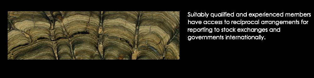 aig_pagebanner02_stromatolite_2